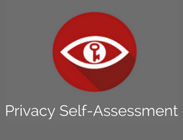 Art. B - Privacy Self-Assessment